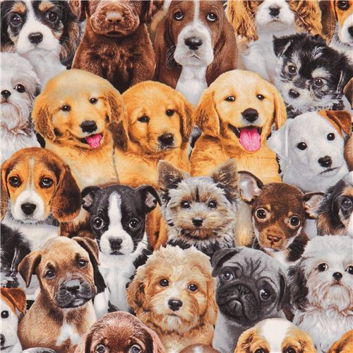 cute fabric funny brown grey dog Adorable Pets by Elizabeth's Studio